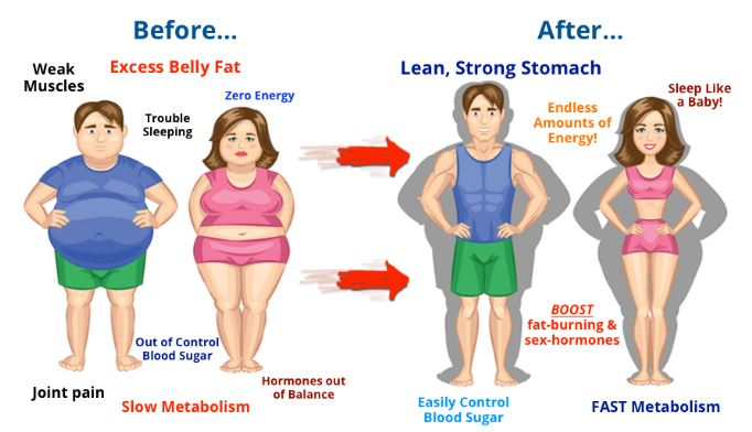 Your Body Transformation